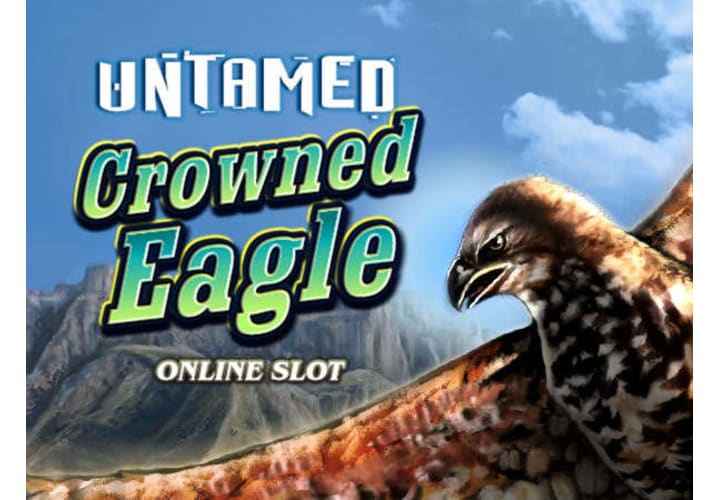 Untamed: Crowned Eagle